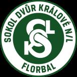 TJ Sokol Dvůr Králové nL B
